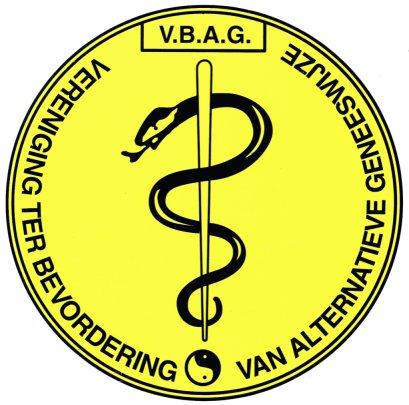 vbag logo klein